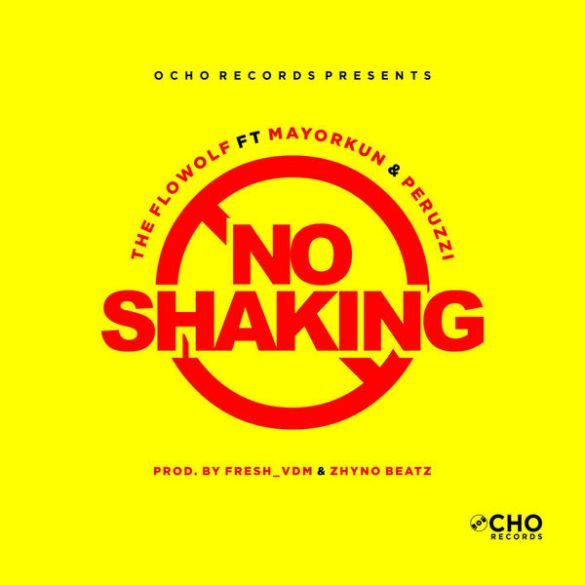 The Flowolf ft. Mayorkun x Peruzzi – No Shaking