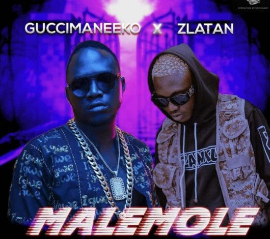 Zlatan x Guccimaneeko – Malemole