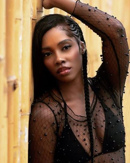 The Person Who Needs My Breast Is Not Complaining – Tiwa Savage Slams Fan Who Body-Shamed Her