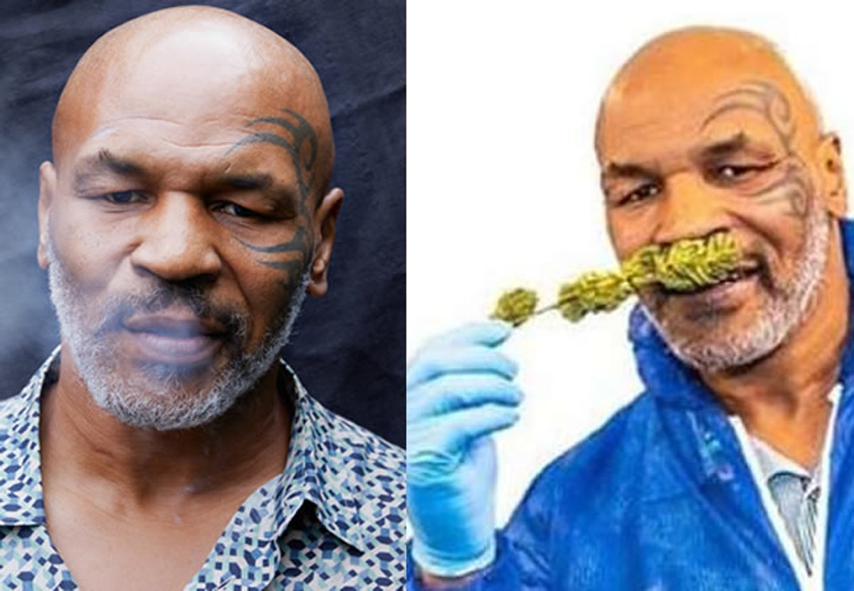 My Business Partner And I Smoke About $40k Indian Hemp Every Month – Mike Tyson Reveals