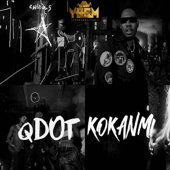 here is art to qdot Kokanmi