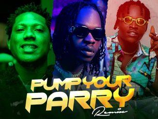 Pump Your Parry Remix CD 1 TRACK 1 128 mp3 image