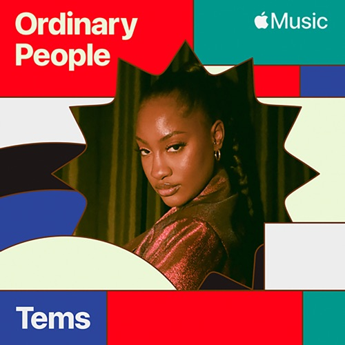 Tems Ordinary People Art (© Onpointy.com)