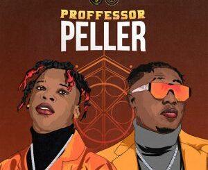 Seyi Vibez Ft. Zlatan – Professor Peller Mp3 Download